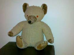 verna teddy bear